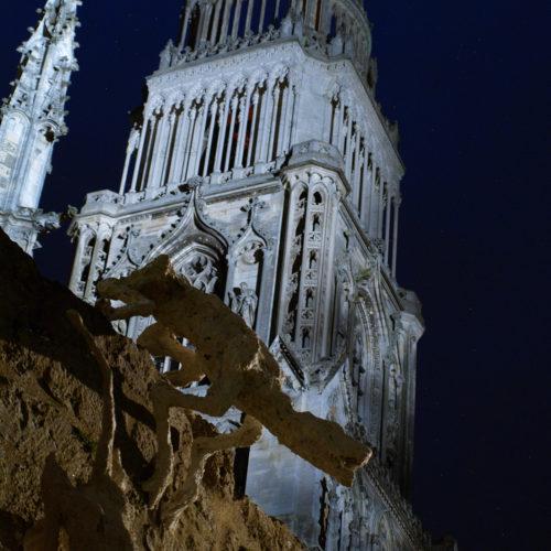 Bestiaire Ligérien - Orléans 2016