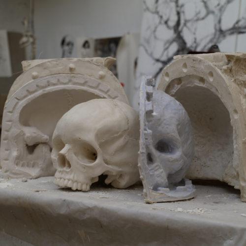 moule et crâne
