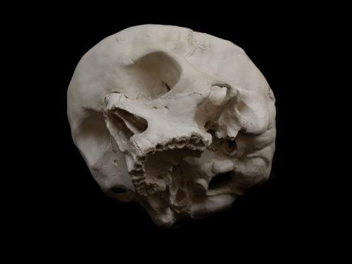 Grand Crâne